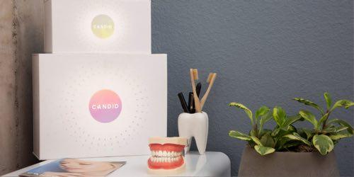 歯ブラシと歯茎の模型