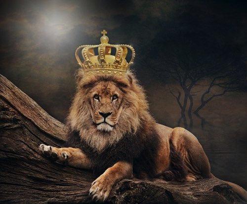 王冠をかぶったライオン